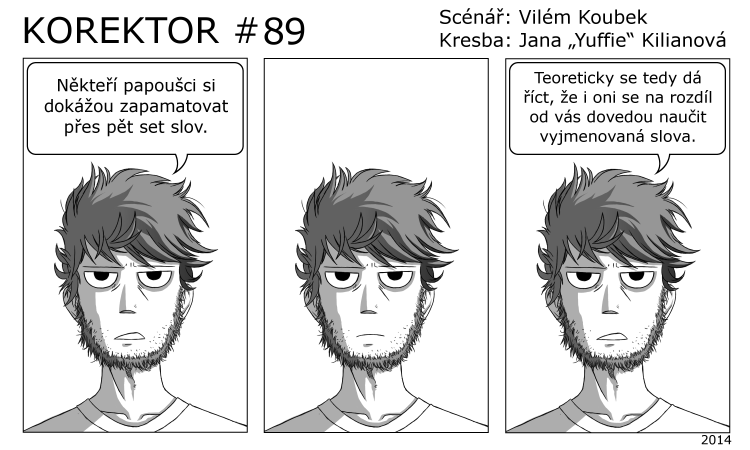 Korektor #89